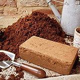 1 x 9L Compressed Coir Compost Bricks - End of season sale!