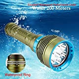 Glumes 2000 Lumen CREE XM-L2 Professional Diving Flashlight|Bright 7 LED Submarine Light Scuba Safety Lights|Waterproof Underwater 200m Light Fishing Handheld Torch|for Outdoor Under water Sports (➤ Green)