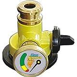 Gas Secura Home Lpg Gas Saftey Device