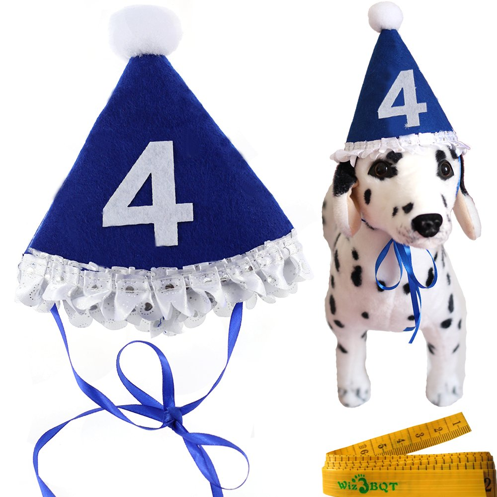 Amazon Blue Pet Dog Cat Birthday Holiday Party Hat Headwear Costume Accessory With A White Ball And Lace For Small Medium Dogs Cats Pets 4 4th Year