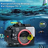 Sea frogs 195FT/60M Underwater Camera Waterproof Diving housing for Olympus TG-3/TG-4 Black (Housing + Red Filter)