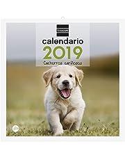 Finocam 780302819 - Calendario de pared 2019