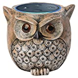 Cheap ANTS Speaker Stand Case for Amazon Echo Dot (2nd or 1st Generation). Alexa Echo Dots Owl Statue Crafted Guard Station (Brown)