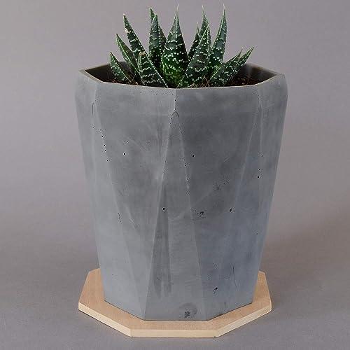 Macetas para cactushttps://amzn.to/2YDofrK
