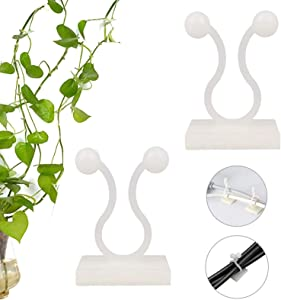 Plant Climbing Wall Fixture Clips, 100 Pcs Invisible Wall Vines Fixture Wall Sticky Hook, Vine Plant Climbing Wall Fixer with Self-Adhesive Hook for Home Decoration, Wire Fixing
