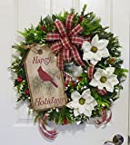 Christmas Wreath With Battery Operated Lights, Artificial Christmas Wreath for Front Door, Magnolia Christmas Wreath