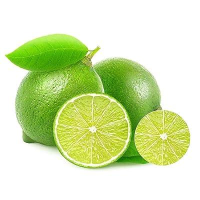 hudiemm0B Lime-Seeds, 20Pcs Lime-Seeds Citrus Fruit Tree Farm Balcony Garden Yard Mini Bonsai Plant Lime Seeds: Sports & Outdoors