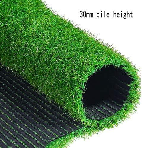 XEWNEG 高品質ガーデン人工芝、暗号化厚手人工芝カーペット、屋外テラスの装飾に適し、幅2メートル (Size : 2x3M)