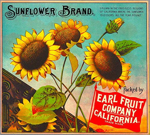 A SLICE IN TIME Los Angeles California Sunflower Flowers Brand Orange Citrus Fruit Crate Box Label Travel Advertisement Art Print. Measures 10 x 11 inches