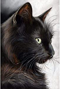 DIY 5D Diamond Painting by Number Kits,Round Drill Diamond Embroidery Painting Cross Stitch Arts Craft Decor Black cat 11.8x15.7in 1 by Bemaystar