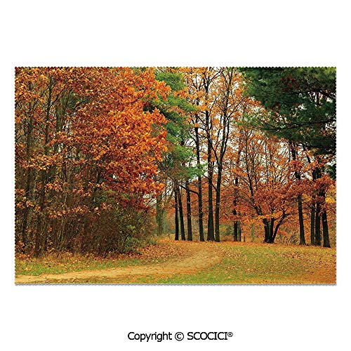 SCOCICI Set of 6 Heat Resistant Non-Slip Table Mats Placemats Cloudy Overcast Day in September Shrubs Pines Sidewalk in Park Forest for Dining Kitchen Table Decor