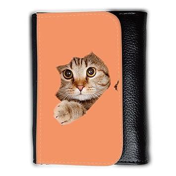 Cartera para hombre // Q05670607 Agujero papel gato Mandarina atómica // Medium Size Wallet: Amazon.es: Electrónica