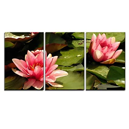 3028a49c915766 Image Unavailable. Image not available for. Color: wall26 - 3 Piece Canvas  Wall Art - Pink Water Lilies ...