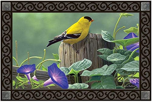 Studio M MatMates Goldfinch Perch Spring Summer Birds Decorative Floor Mat Indoor or Outdoor Doormat with Eco-Friendly Recycled Rubber Backing, 18 x 30 Inches