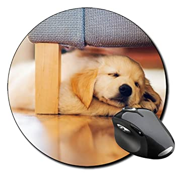 Golden Retriver durmiendo perro dormir por debajo de la cama redonda alfombrilla de ratón PC: Amazon.es: Electrónica