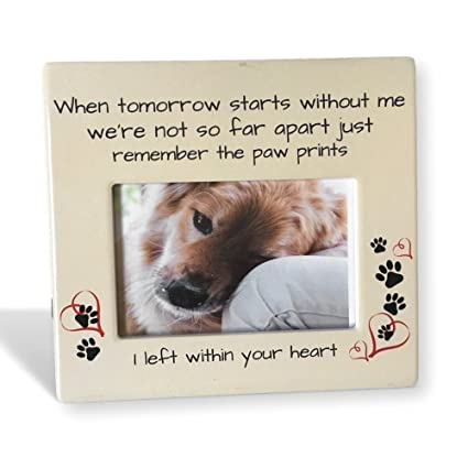 Amazon.com - BANBERRY DESIGNS Pet Memorial Frame - When Tomorrow ...