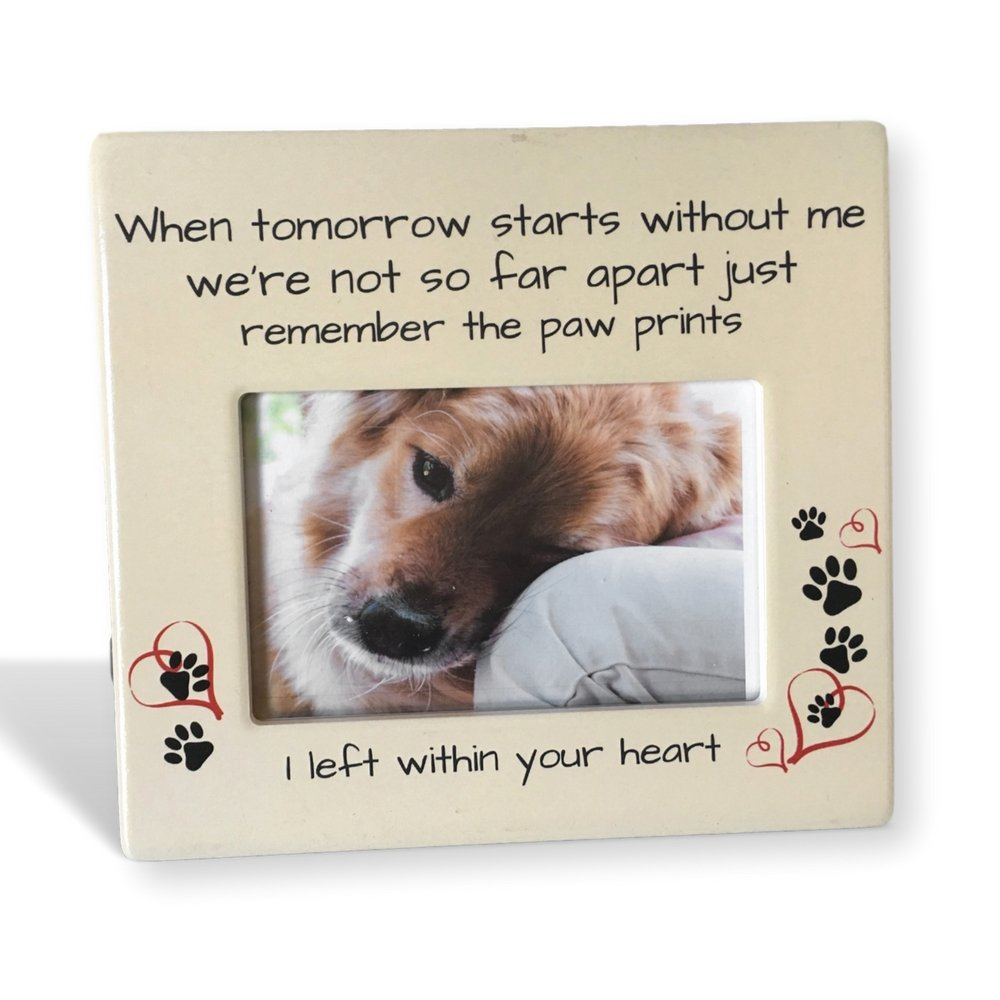 Banberry Designs Pet Memorial Frame - When Tomorrow Starts Without Me Sentiment - 4 x 6 Inch Picture Frame for Dog or Cat - Pet Sympathy