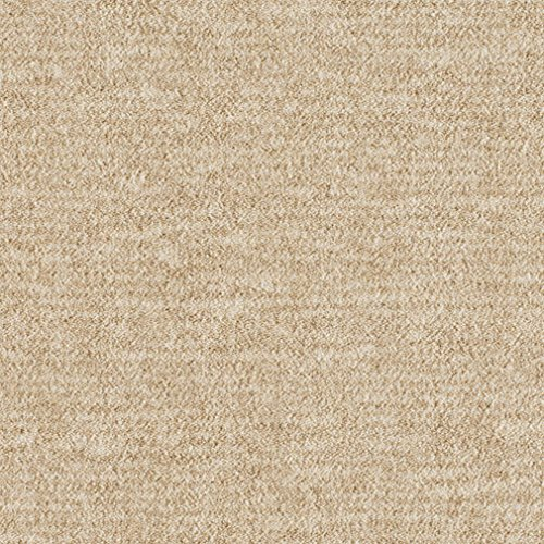 Amazon Com Koeckritz Rugs Stratum Milliken Indoor Cut