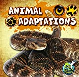 Animal Adaptations, Julie K. Lundgren, 1617417335