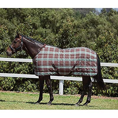Saxon Stable Stand Med Blanket