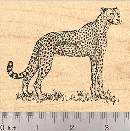 Cheetah Rubber Stamp, African Wildlife, Large