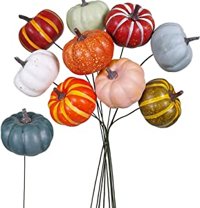 Winlyn 10 Pieces Assorted Faux Pumpkin Picks Floral Arrangements Fall Harvest Inspired Displays