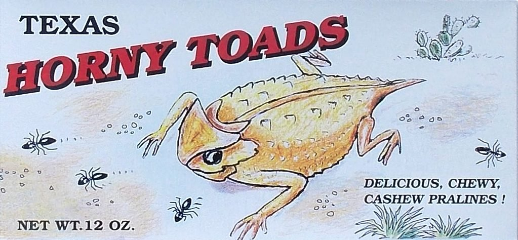 Texas Horny Toads Delicious Chewy Cashew Pralines Gift Box - 12 Oz. by Texas Horny Toads