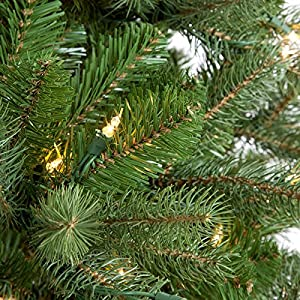 National Tree (PEDD1-312-100) Feel-Real Downswept Douglas Hinged Tree with 1000 Clear Lights 2