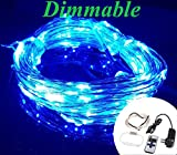 Zzmart Dimmable 12V 50ft 150 Leds String Lights with Remote - Waterproof Flexible Copper Wire, Holiday Decorative LED Lights for Outdoor and Indoor (1, Blue)