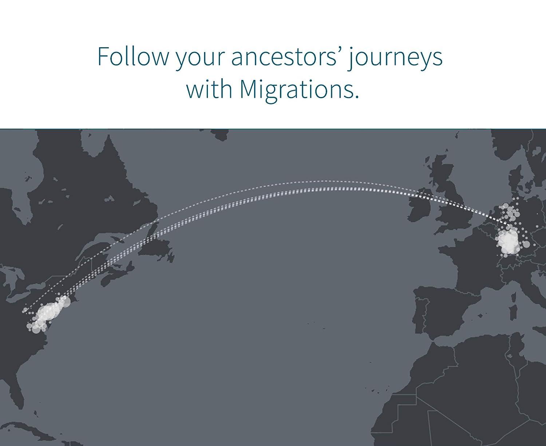 Amazon.com: AncestryDNA: Genetic Testing Ethnicity: Health & Personal Care