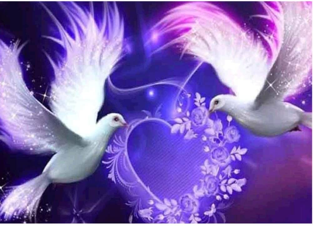 Smdoxi DIY 5D Diamond Painting,Partial Round Drill Cross Stitch Set Peace Dove with Angel Wings Rhinestone Embroidery for Wall Decoration Home Decor