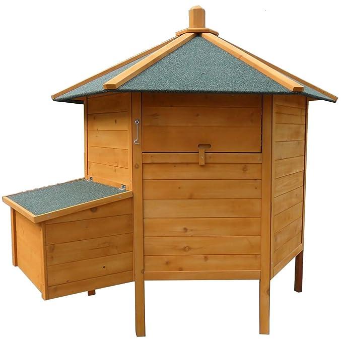 Gallinero hexagonal, pajarera, jaula para gallinas con nido: Amazon.es: Productos para mascotas