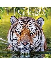 Tigers 2022 Wall Calendar