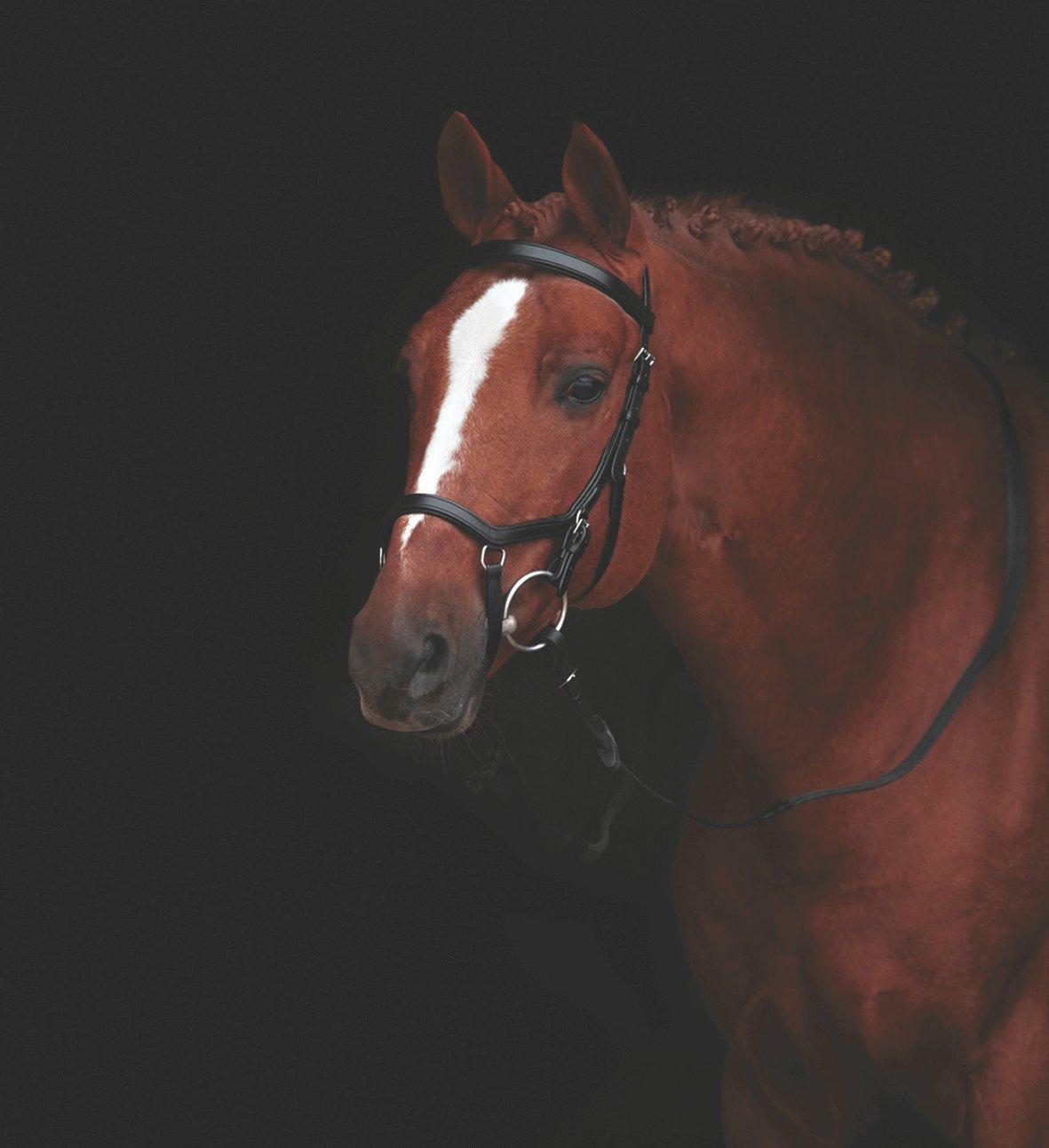 Horseware Rambo Micklem Multi Reins Pony Brown