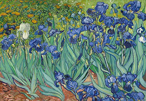 Irises by Vincent Van Gogh Dutch Impressionism 20th Century Artist Peel and Stick Large Wall Mural Removable Wallpaper
