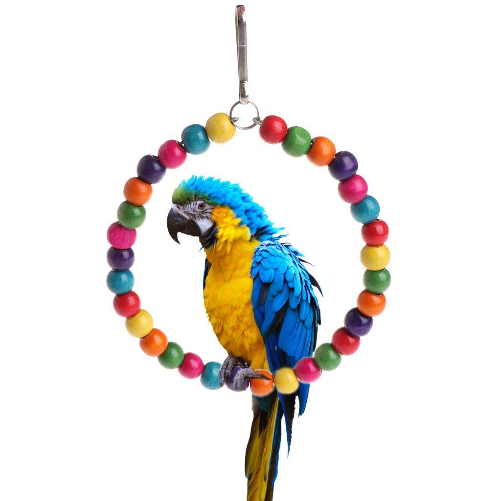 Cold Toy hölzerner pájaro de Loros de Juguetes Stehen Soporte de Hängende balanceo de Anillos con Pelotas, M