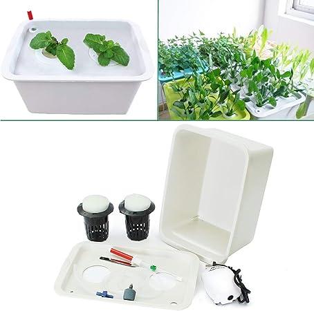 Wenhu 220V Sistema hidropónico de Plantas, 2 Agujeros para Interior de jardín, Armario, Kit de Cultivo de Burbujas, macetas de jardín, macetas de guardería: Amazon.es: Hogar