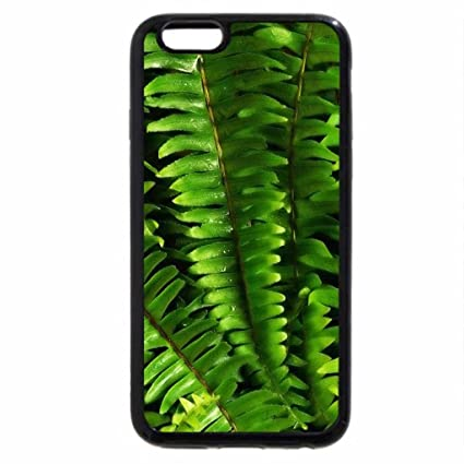 coque iphone 6 fougeres