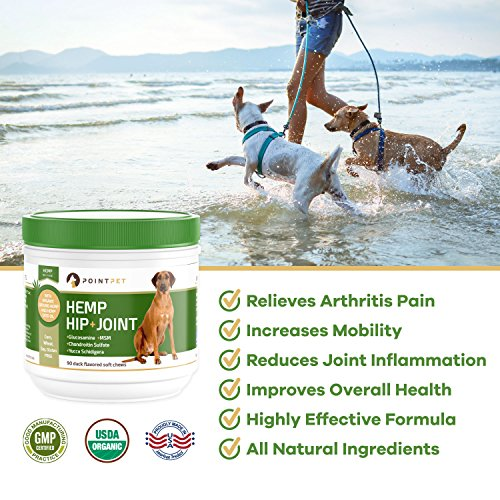 61k6uicmRkL - POINTPET Advanced Hip and Joint Supplement for Dogs with Organic Hemp Seeds and Oil, Best Glucosamine Chondroitin, MSM, Omega 3-6, Improves Mobility, Reduces Pain and Inflammation, 90 Soft Chews