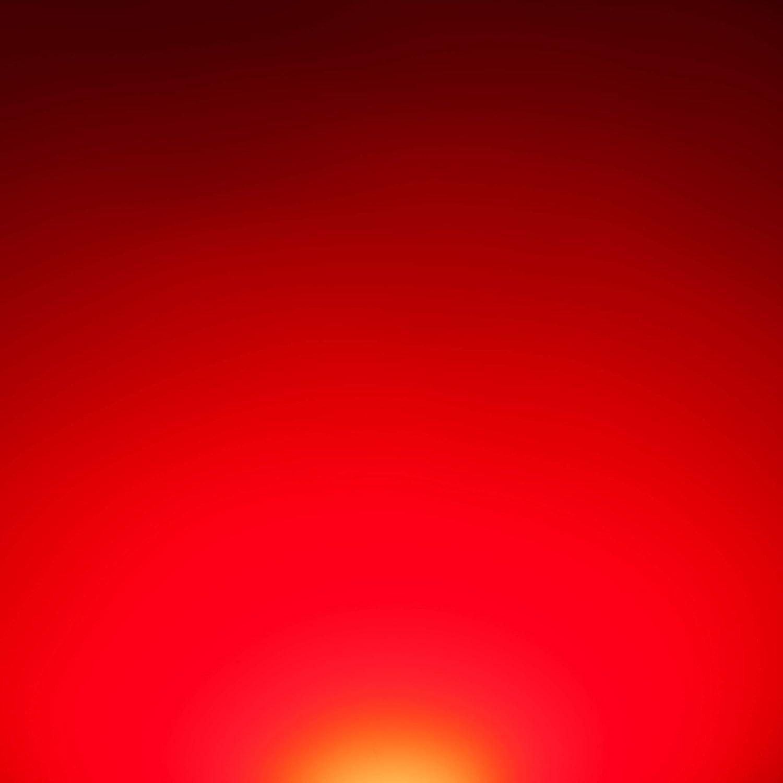 Crecen luces y proyectos electr/ónicos COB Naranja Ambar 610nm Diodo Emisor de Luz 1 x LED 10W Componente LED de Alta Potencia Iluminaci/ón del Acuario