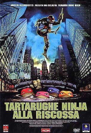 Tartarughe Ninja Alla Riscossa [Italia] [DVD]: Amazon.es ...