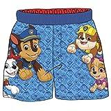 Nickelodeon Toddler Boys' Paw Patrol Swim Shorts, Blue, 3T