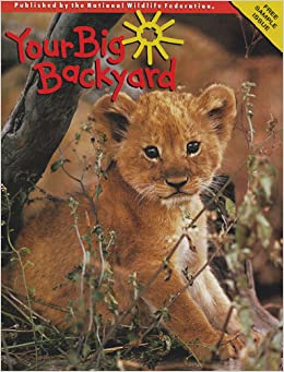 your big backyard magazine lion cub cover donna johnson