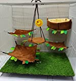 Brown Sugar Pet Store 5 piece Sugar Glider Angle Cushion Cage Set Light Brown Color