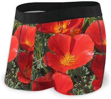 Various Santa Hats Mens Underwear Boxer Briefs Lightweight Short Leg Underwear S-XXL