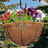 Sunnydaze Eggshell Hanging Flower Basket w/Coco Liner, 14 Inch Diameter For Sale