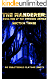 The Wanderer:: Book One of the Godsend Series Section Three
