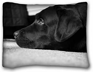 TSlook Throw Blankets Black and White Labrador Fleece Blanket for Couch/Sofa/Bed 40x50