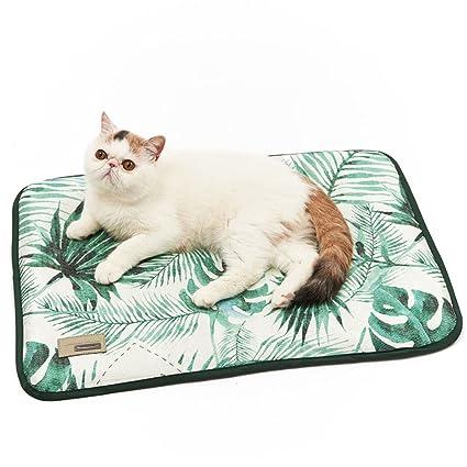 Amazon Com Lanlan New Year S Day Pet Bed Mats Pet Dog Self