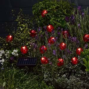 De mariquita Solar de luces festivas con cordón - juego de 16 (91jde74)